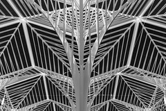 Skeleton (Rob Oo) Tags: portugal lisboa lisbon calatrava oriente lissabon estaçãodooriente ccby40 ro016b ccby