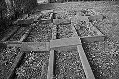 QUAKER BURIAL GROUND  Monochrome (brianarchie65) Tags: generalcemetery cemeteries graves grave brianarchie65 geotagged quaker quakers kingstonuponhull hull cityofculture eastyorkshire springbankwest monochrome un ngc blackandwhite blackandwhitephotos blackandwhitephoto blackandwhitephotography blackwhite123 blackwhiterealms flickrunofficial flickr flickruk flickrcentral flickrinternational ukflickr canoneos600d