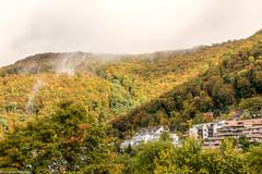 Bad Urach (Christian Hoemke) Tags: badurach badenwürttemberg canoneos70d lightroomcc tamrondiii16300mm13563 deutschland de germany canon tamron tamron16300 landscape hill woods