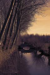Buitenland - Belgium (roland_tempels) Tags: nature naturereserve belgium supershot buitenland water bridge bornem sky sunlight