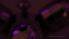 Reflective Colour [explored] (Mars Mann) Tags: macrophotography abstract colour purple reflection lowlight microfourthirds flickrmarsmann metallic depthoffield calm warm marsmannphotography