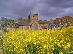 Golden Fields (1) St Mary's Church. (Kev's.Pix) Tags: nunthorpe northyorkshire fields oilseedrape countryscene countryside field flowers stmarys church