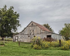Barn in the Fall (A Anderson Photography, over 3.3 million views) Tags: barn sunflower yellow canon