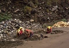 Women at work (Paolo Levi) Tags: manali himachal worker woman india canon ftb fd 50mm ilfochrome