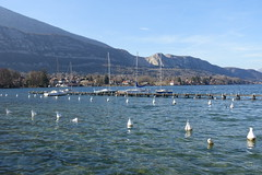 Boats @ Plage du Bout du Lac @ Doussard @ Walk in Sources du Lac d'Annecy (*_*) Tags: february afternoon 2019 hiver winter savoie sourcesdulacdannecy walk randonnée nature hiking mountain marche europe france hautesavoie 74 annecy doussard lac lake lakeannecy lacdannecy
