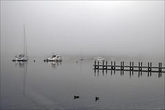 Misty Boats  in Ambleside (Elaine 55.) Tags: ambleside cumbria lakewindermere ducks boats mist