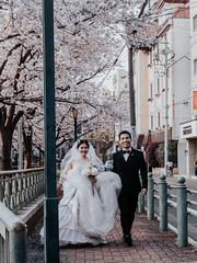happy wedding (Crow538) Tags: osaka street photography 桜ノ宮 2019 sakuranomiya sakura