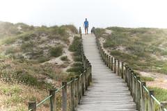 Esposende. Portugal (miguelno) Tags: esposende braga portugal playa beach piedras niebla fog panasonic lumix fz1000 hombre perro