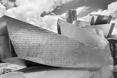 The Boat (PJehlicka) Tags: city building bw spain gallery architecture museum bilbao guggenheim