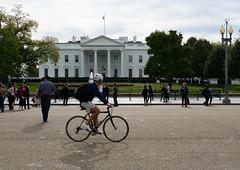 The White House (José X) Tags: bike bicicleta thewhitehouse washington usa man hombre people gente morning mañana sonyalphauniverse sony street calle streetphotography