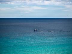 So allein auf dem großen Atlantik - Please zoom it! (mohnblume2013) Tags: fuerteventura atlantik kanaren fischer