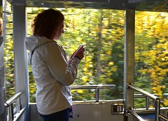 Check messages (thomasgorman1) Tags: woman trees train moving motion alaska candid nikon wilderness cellphone