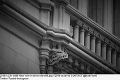 2018-12-31 0498 New York in monochrome (Badger 23 / jezevec) Tags: newyork newyorkcity bigapple ኒውዮርክከተማ نيويورك ܢܝܘܝܘܪܩ নিউইয়র্কসিটি ньюйорк горадньюёрк ньюёрк nuevayork нюйорк ནེའུ་ཡོར་ཀ། ньюйоркхото çĕнĕйорк dinasefrognewydd neiyarrickschtadt νέαυόρκη ньюйоркбалһсн 뉴욕 նյույորք न्यूयॉर्कनगर tchiaqyorkiniqpak ניויורק ನ್ಯೂಯಾರ್ಕ್ನಗರ ნიუიორკი evreknowydh ņujorka niujorkas њујорк ന്യൂയോർക്ക്നഗരം न्यूयॉर्कशहर unitedstates us usa amirikasyarikat америкэштатзэгуэтхэр verenigdestatevanamerika dievereinigtestaatenvoamerika አሜሪካ geānedurīcuamerican америкаеидуаштатқәа америка الولاياتالمتحدة estatosunitos ܐܘܚܕܢܐܡܚܝܕܐ statiunitialiamerica ètatsunisd'amèrica আমেৰিকাযুক্তৰাষ্ট্ৰ tetãpeteĩrekoamérikagua америкалъулцолъаралштатал istadusunidus amerikabirləşmişştatları amerikakakelenyalenjamanaw মার্কিনযুক্তরাষ্ট্র bíkok amerika serikat architecture arquitectura зодчество arquitetura 建筑 건축술 建築 architettura αρχιτεκτονική architektur architectuur 建築學 建筑学 stavebnictví
