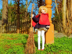 On her Way to Broomstick Flying Practice (Forest_Daughter) Tags: alchemic labo unoa sist volks mini dollfie dream bjd balljointed doll hybrid