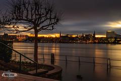 Sunset over Bonn (Betrachtungsweisen) Tags: 2018 eos77d kennedybrücke langzeitbelichtung bonn fluss himmel skyline sonnenuntergang sunset stadt city lights baum tree longexposure clouds wolken rhein river