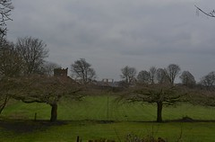 Chester 010319_DSC3185 (Leslie Platt) Tags: exposureadjusted straightened cheshirewestchester chester thewallsofchester kingcharlesstower abbeygreen