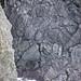Pillow basalts (Franciscan Complex, Jurassic; Point Bonita, California, USA) 35