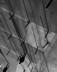 Street shadows (jeffclouet) Tags: paris france europe capital nikon nikkor d850 monochrome bnw bw nb pb noiretblanc blackandwhite city ville cuidad downtown street rue calle urban urbano urbain people streetphotography streetview streetlife streetscene streetshot urbanlife urbanphotography urbanscene montparnasse shadows ombres sombras bystanders walking