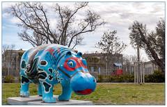 Hippopo masqué (balese13) Tags: 1855mm bouchesdurhône d5500 istres nikonpassion paca provence arbre bestiole bleu blue hippopotame jardin masque nikon nuages parc zooistres étangdelolivier yourbestoftoday balese 1000v40f