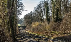 09_2019_02_16_Angertal_Spaziergang_Walk (ruhrpott.sprinter) Tags: ruhrpott sprinter deutschland germany allmangne nrw ruhrgebiet gelsenkirchen lokomotive locomotives eisenbahn railroad rail zug train reisezug passenger güter cargo freight fret wülfrath angertal rohdenhaus heiligenhaus eh rhc 1275 4185 kalkzug schneeglöckchen snowdrops bachlauf bäume mühle klammern teich logo natur outdoor