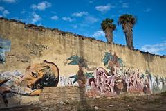 Graffitis_Puerto_spain-001 (alain leveque) Tags: puerto spain graffiti graffitis cadiz cadix espagne palmier enfant andalousie andalucia