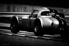 Cobra on Track (Rawcar.com Photography) Tags: accobra cobra shelby rawcar lemans racecar motorsport race racing