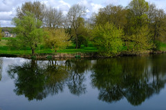 Nature is beautiful, love spring! (p.marteville) Tags: spring reflection trees water river cher france blue green châtressurcher supershot ngc abigfave printemps arbre bleu vert rivière eau reflexion