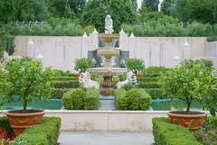 Hamilton gardens (rogsykes) Tags: sonya77ii hamilton gardens ndfilter