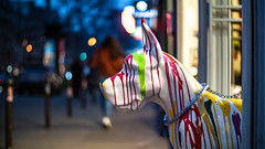 Beware of the dog (::nicolas ferrand simonnot::) Tags: close up closeup bokeh depth field light night color flare vintage manual german fixed length prime lens west germany profondeur de champ effet nature flou extérieur wow leitz summilux r 50mm f14 6 blades iris leica paris photography streetphotography bw black white darkness contrast monochrome