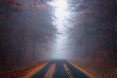 Road to the Unknown II (Rob Christiaans  Photography) Tags: canon5dmkiii canonef70200f4 gitzogt5532ls luminositymasks robchristiaans germany eifel stadtkyll fog autumn fall forest road lpm