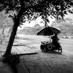 Paksong, Laos (pas le matin) Tags: travel voyage nb bw world blackandwhite noiretblanc monochrome canon 7d canon7d eos canoneos7d eos7d street candid tree arbre seller vendeur route road laos lao paksong city ville asie asia souteastasia