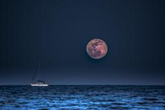 El mar de la Tranquilidad (*Nenuco) Tags: moon supermoonluna superluna valencia mediterraneo barco boat blue azul malvarrosa nikon d5300 tamron 70300 jesúsmr