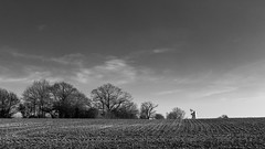 Terling Mill (pboolkah) Tags: chelmsford england unitedkingdom gb canon canon5d canon5dmkiv trees field mill essex terling