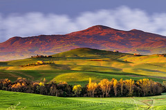 Never Tire Of Mother Nature (pongo 2007) Tags: pongo2007 valdorcia tuscany italy spring morning hills nature