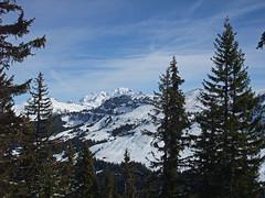 DSCF3734 (Laurent Lebois ©) Tags: laurentlebois france nature montagne mountain montana alpes alps alpen paysage landscape пейзаж paisaje savoie beaufortain pierramenta arèchesbeaufort