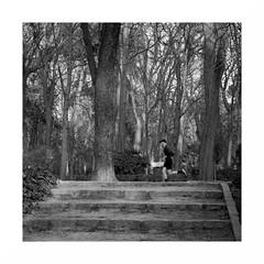 The Runner (juan jose aparicio) Tags: runner corredor parque park running stairs trees arboles paisaje street callejero bw