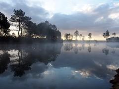 mist (evablanchardcouet) Tags: trees morning rise lake water nature reflets ciel sky groupenuagesetciel platinumheartaward