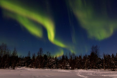 Northern Lights in Finnish Lapland (Travel.diaries) Tags: northernlights aurora arctic polarcircle finland lapland ivalo polar polarlights arcticcircle lights northpole
