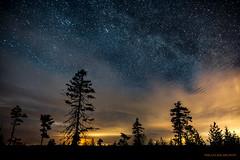 Are we alone? (MIKAEL82KARLSSON) Tags: dalarna bergslagen grängesberg gränges sverige sweden sony sigma 20mm f14 art natur night natt nightshot nattfoto naturbild nature nightphoto stjärnhimmel skog forrest explorer expo himmel sky mikael82karlsson