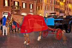 Piazza di Spagna, Rome (Claudio_R_1973) Tags: horse wheel people street road square piazzadispagna rome roma italy italia vivid colorful scene horsecarriage carriage urban typical roman lazio