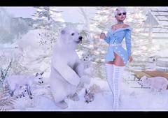 It's Wintertime (nannja.panana) Tags: blackbantam addams birth cncreations catwa dreamscapesartgallery ikon letre maitreya nanika nannjapanana semotion senseevent tlchomecollection tram