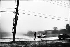 morning walk #2 (Pomo photos) Tags: morning walking walk man silhouette pillar pole car street lake river gof mist misty sky tree trees surreal noir leicax1 blackandwhite blackwhite bw monochrome mono people wire cable grain grass water