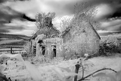 Outside inside, Limerick, Ireland (IR) (Sean Hartwell Photography) Tags: infrared ir monochrome blackandwhite newcastlewest limerick countylimerick ireland adandoned decay derelict rural cottage