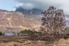 "Cloud-Shrouded ""Slioch,"" 981 m. (3,219 feet). (Scotland by NJC.) Tags: clouds haze billowing mist fog ""rain clouds"" obscure shadow سَحَابَة nuvem 云 oblak sky wolk nube pilvi nuage wolke σύννεφο nuvola mountains hills highlands peaks fells massif pinnacle ben munro heights جَبَلٌ montanha 山 planina hora bjerg berg montaña vuori montagne βουνό montagna fjell lakes lochs reservoirs waters meres tarns ponds pool lagoon lago 湖 jezero sø meer järvi lac see λίμνη 호수 lochmaree slioch kinlochewe scotland"