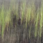 Veer Dam | 4 thumbnail