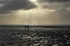 Missed The Ship (RadarO´Reilly) Tags: föhr nordfriesland schleswigholstein germany insel island nordsee northsea wattenmeer mudflat ebbe lowtide küste coast himmel sky landschaft landscape wolken clouds