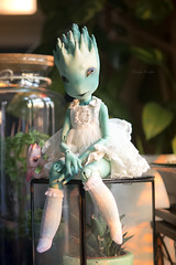 Chlorophyll (koalakrashdolls) Tags: bjd doll koalakrash creaturesdolls balljointeddoll ball jointed absinthe fantastic cute toy