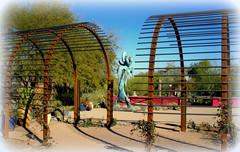 """St. Earth"" – Desert Botanical Garden, Papago Park, Phoenix, Arizona (6) (milomingo) Tags: outdoor dbg desertbotanicalgarden phoenix arizona southwest desert arid garden park statue art bronze stearth statuary gardenart walkingfigure robertwick texture metal iron steel rust arbor blue patina verdigris"