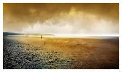 After-the-rain-(Après-la-pluie) (PATRICE OUELLET) Tags: patricephotographiste aftertherain aprèslapluie rivages shores sea mer poetry poésie clouds nuages