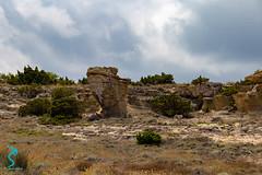 Pianosa 19695 (Roberto Miliani / Pelagos.it) Tags: pianosa isola hiking trekking walking elbe island ile camminare parconazionale arcipelagotoscano toscana tuscany toskana